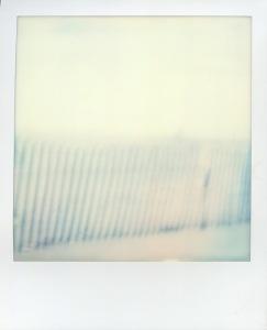 polaroids-4